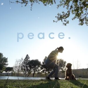 How to Find Inner Peace Through Detachment