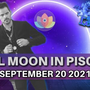 The Leo King Full Moon in Pisces Astrology/Tarot Horoscope September 20 2021 All Signs Collective
