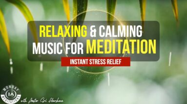 Soft Piano With Water Sounds for Stress Relief - Calm Music for Meditation, Beautiful Relaxing Music